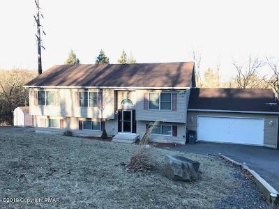 East Stroudsburg Single Family Home For Sale: 338 Overlook Dr
