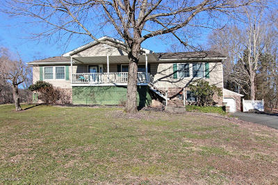 East Stroudsburg Single Family Home For Sale: 124 Roosevelt Rd