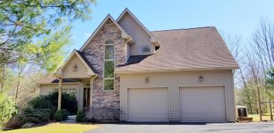 Palmerton Single Family Home For Sale: 55 Breezewood Court