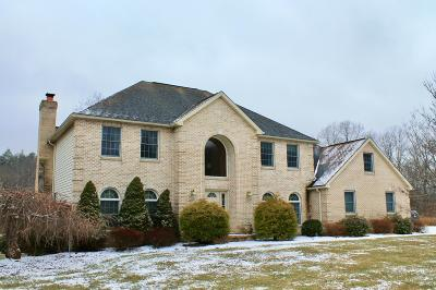 Stroudsburg Single Family Home For Sale: 602 Little Mayfair Ct