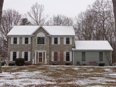 East Stroudsburg Single Family Home For Sale: 214 Sycamore Dr