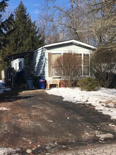 East Stroudsburg Single Family Home For Sale: 148 Buttonwood Ct