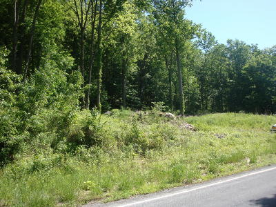 Monroe County Residential Lots & Land For Sale: Cherry Valley Road
