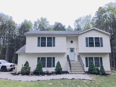 Pocono Lake Single Family Home For Sale: 106 Elaine Dr