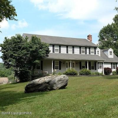 Stroudsburg Single Family Home For Sale: 109 Indian Spring Dr