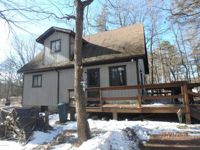 Towamensing Trails Single Family Home For Sale: 766 Stony Mountain Rd