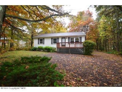 Jim Thorpe Single Family Home For Sale: 320 Cold Spring Dr