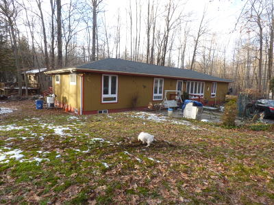 Pocono Lake Single Family Home For Sale: 104 Selig Rd