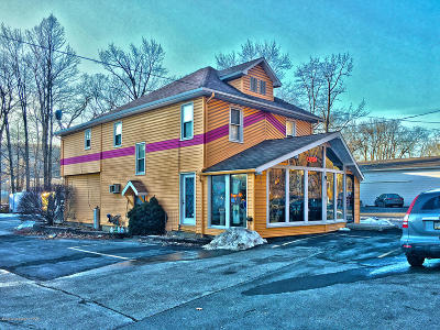 Tannersville Commercial For Sale: 2736 Route 611