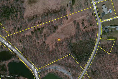 East Stroudsburg Residential Lots & Land For Sale: 1016 Sellersville Dr