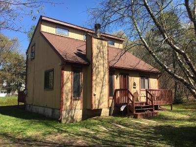 Albrightsville Single Family Home For Sale: 7 Tonto Court