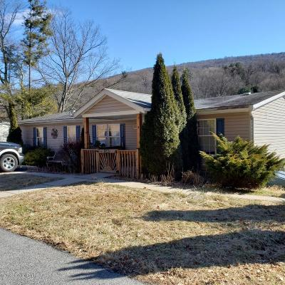Saylorsburg Single Family Home For Sale: 1310 Blue Mountain Circle