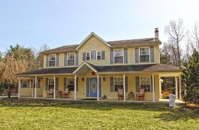 Long Pond PA Single Family Home For Sale: $295,000