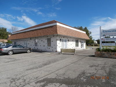Monroe County Commercial For Sale: 1023 Interchange (Route 209)ste 201 Rd