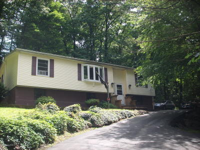 Stroudsburg Single Family Home For Sale: 137 W Hills Dr