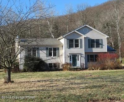 Stroudsburg Single Family Home For Sale: 1103 Gap View