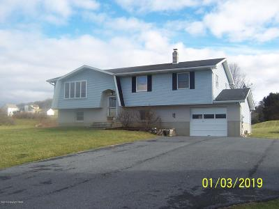 Lehigh County, Northampton County Single Family Home For Sale: 3263 W Scenic Dr