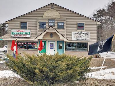 Pocono Summit Commercial For Sale: 2591 Route 940