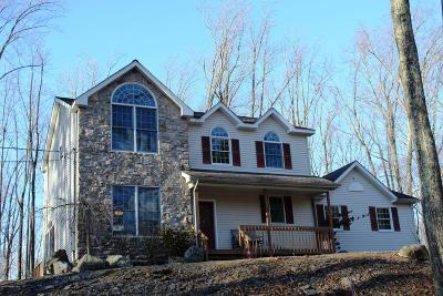 Stroudsburg Single Family Home For Sale: 1126 Beaver Valley Rd