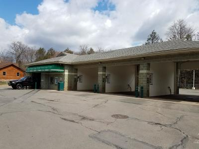 Blakeslee Commercial For Sale: 5610 Route 115
