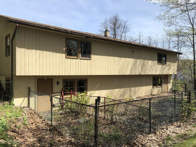Mount Pocono Commercial For Sale: 219 Nittany Ct
