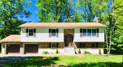 Mount Pocono Single Family Home For Sale: 78 Bradley Rd