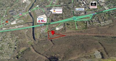 East Stroudsburg Commercial For Sale: S Forge Road