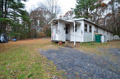 East Stroudsburg Single Family Home For Sale: 436 Cranberry Rd