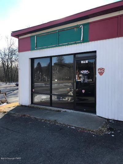 Tannersville Commercial For Sale: Route 611