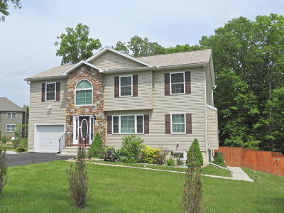 East Stroudsburg Single Family Home For Sale: 911 Astilbe Way
