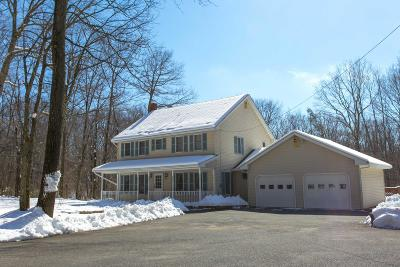 Bangor Single Family Home For Sale: 1379 Blue Mountain Dr