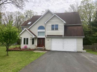 Effort Single Family Home For Sale: 252 Mount Effort Dr