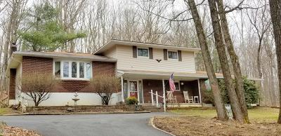 Saylorsburg Single Family Home For Sale: 117 Foxcroft Dr