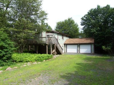 Towamensing Trails Single Family Home For Sale: 37 Chapman Cir