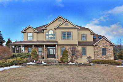 Stroudsburg Single Family Home For Sale: 1556 Rachel Rd