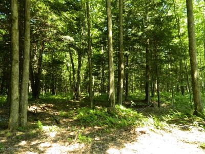 East Stroudsburg Residential Lots & Land For Sale: 209 Pa Rt 209