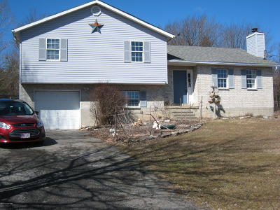 Blakeslee Single Family Home For Sale: 343 Skyline Dr
