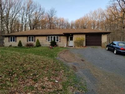 Albrightsville Single Family Home For Sale: 50 Buck Hill Rd