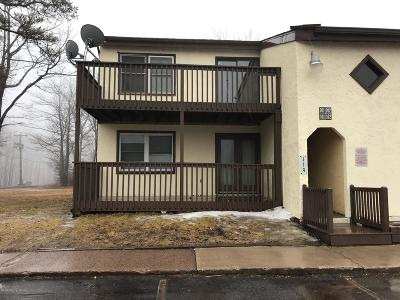 Single Family Home For Sale: 119 Snowshoe Ct