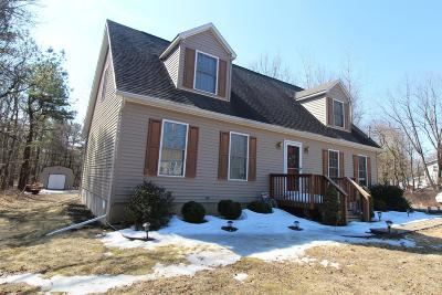 Albrightsville Single Family Home For Sale: 784 Stony Mountain Road