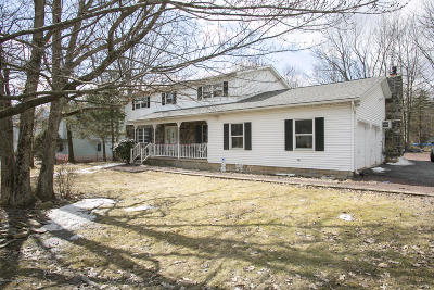Mount Pocono Single Family Home For Sale: 15 Stacey Ln