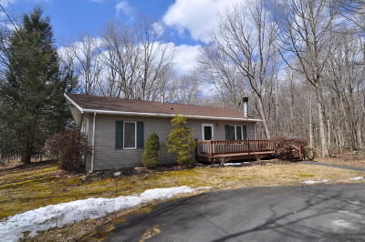 Jim Thorpe Single Family Home For Sale: 25 Cypress Dr