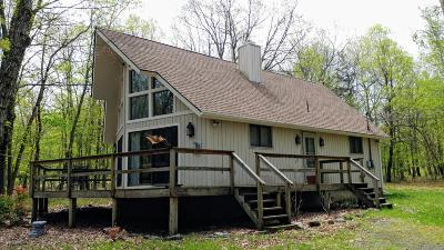 Towamensing Trails Single Family Home For Sale: 460 Kilmer Trl