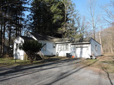 East Stroudsburg Single Family Home For Sale: 2223 Gap View Drive