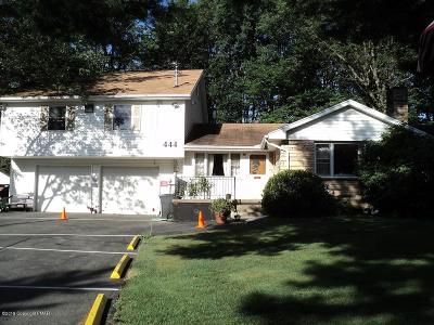 Mount Pocono Single Family Home For Sale: 444 Park Ave