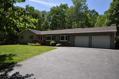 Jim Thorpe Single Family Home For Sale: 21 Rhododendron Rd