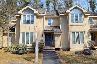 Pocono Pines Single Family Home For Sale: 1013 Crestwoods Drive