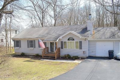 Stroudsburg Single Family Home For Sale: 707 Avenue E