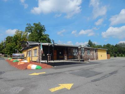 Blakeslee Commercial For Sale: 3884 Route 115 Rte