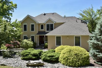 East Stroudsburg Single Family Home For Sale: 256 Eastshore Dr